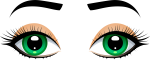 Female Eyes With Eyebrows Png Clip Art - Human Eye Eyes Clipart, Transparent Png