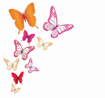 Butterflies Png Image Background - Transparent Background Colorful Butterfly, Png Download