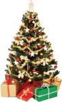Free Png Download Small Christmas Tree Png Images Background - High Resolution Christmas Tree, Transparent Png