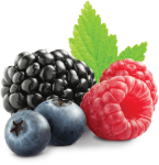 Clip Royalty Free Fruit Transparent Berry - Berry Transparent, HD Png Download