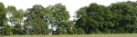 0 Tree Background Wallpaper Tree For Background Png - Trees Background Png Hd, Transparent Png