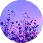 Aesthetic Circle Icon Purple Flowers Flower Purpleaesth, HD Png Download