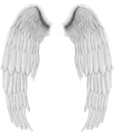 Angel Wings, Collage, Free, Design, Wing Wing, Stickers, - Asas De Anjo Png, Transparent Png