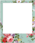 Cool Pictures - Cute Tumblr Polaroid Frame Transparent, HD Png Download