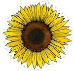 Yellow Flower Clipart Tumblr Transparent - Aesthetic Sunflower Sticker, HD Png Download
