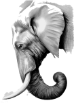 Graphic Black And White Library The Elephants Paper - Asian Elephant Head Drawing, HD Png Download
