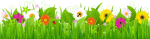 Grass And Flowers Clipart - Grass With Flower Border, HD Png Download