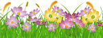 Grass Ground With Pink Flowers Png Clipart Gallery - Grass Flower Clipart, Transparent Png