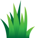 Grass Lawn Clipart Leaves Green Transparent Png - Cartoon Grass Vector Png, Png Download
