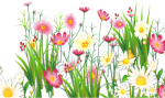 Grass Clipart Transparent Background - Grass And Flowers Png, Png Download