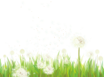 Transparent Grass With Dandelions Png Clipart - Grass Transparent Png Footer, Png Download