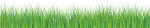 Green Line Png - Green Grass White Background, Transparent Png