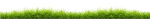 Lawn Clipart Grass Line - Lawn, HD Png Download