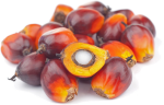 Subscribers Receive Two Daily Market Reports And Access - Crude Palm Oil Png, Transparent Png