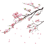 Png Cherry Blossom Tree, Transparent Png
