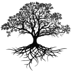 Tree Of Roots Transparent Transparent Background - Oak Drawing, HD Png Download