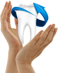 Single Teeth Png Free Download - Dentistry, Transparent Png