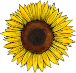 Travel Vol Ii - Aesthetic Sunflower Sticker, HD Png Download