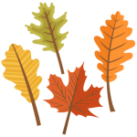 Fall Leaves Clip Art - Cute Autumn Leaf Clipart, HD Png Download