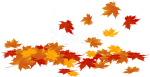 Download Fallen Leaves Clipart Transparent Background - Pumpkins Hd White Background, HD Png Download