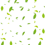 Available In Png Format - Floating Leaves Png, Transparent Png