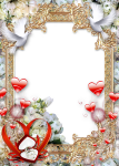 Free Png Download Wedding Photo Frame Png Images Background - Wedding Photo Frame Png, Transparent Png
