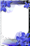Blue Wedding Borders And Frames Png, Transparent Png